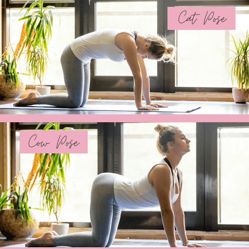 Cat and Cow Yoga Pose - Step 2 of the 15 minute fertility Yoga workout